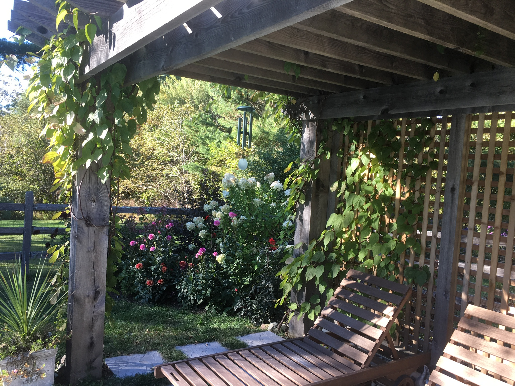 Shade of a rustic North Woods Pergola