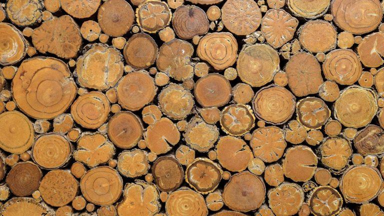 Materials for Wood Pergola Kits
